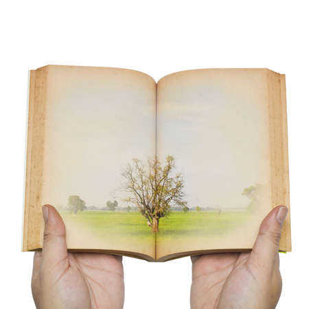 Save the environment, (hand open an old book with tree on pages) photo