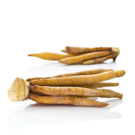 rotunda: Finger root  Boesenbergia rotunda  on white background Stock Photo