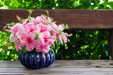 Hibiscus bouquet in blue vase on wooden chair photo