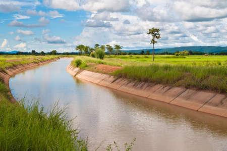 Canal de riego a través de la granja de arroz en campo de Tailandia Foto de archivo