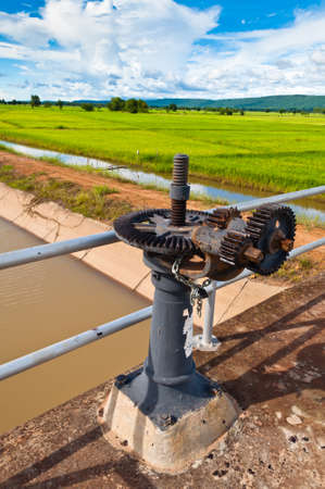 sluice: Water gate controller on sluice in paddy land