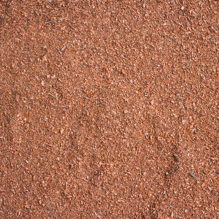 Sawdust on the ground Stock Photo - 17073334