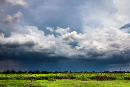 rainy season: Pouring rain and dark clouds over the pasture in countryside of Thailand