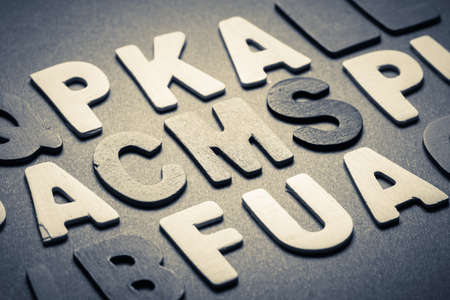 CMS (content management system) topic in cut wood letter photo