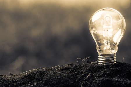 Light bulb glowing in soil as idea or energy concept Standard-Bild
