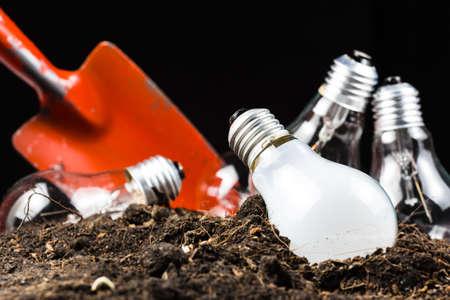juntar: Muchas bombillas como las ideas en el suelo con la pala para cavar y recoger