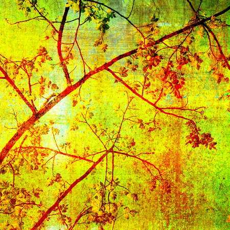 treetop: Abstract treetop on grunge painting