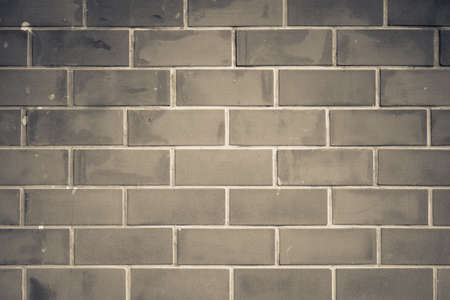 monotone: Old brick wall in monotone