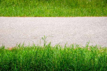 gramineas: Pastos y carretera, resumen de antecedentes
