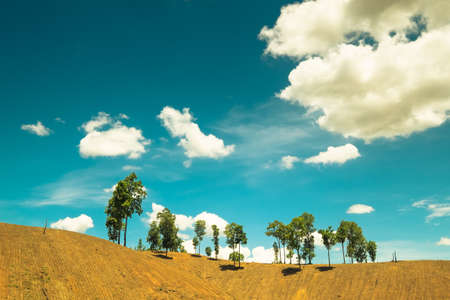 less: Soil mountain with less trees left in countryside of Thailand, retro color
