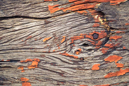 chipped paint: Old cracked wood wall with some chipped paint, retro color style