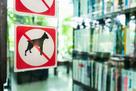 No dog allowed sign on the glass door outside coffee shop Stock Photo