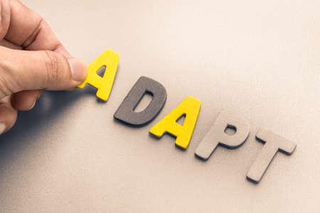 adapt: Hand arrange wood letters as Adapt word