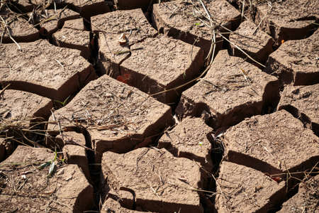 barrenness: Closeup cracked and dry soil