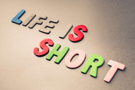 subsistence: Life is Short text arranged by wood letters Stock Photo