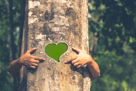 green eco: Woman give a hug behind the tree and make a heart sign on the trunk