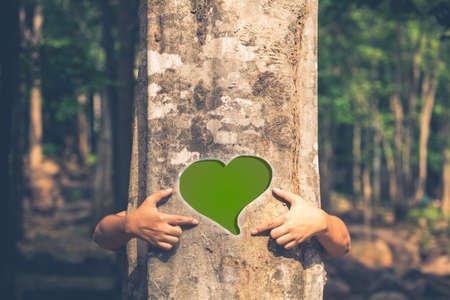 Woman give a hug behind the tree and make a heart sign on the trunk