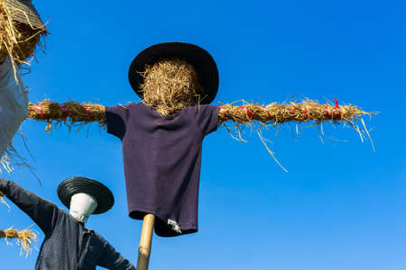 Scarecrow in countryside of Thailand Stock Photo