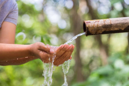 receive: Hands receive the natural water from bamboo pipe in the forest
