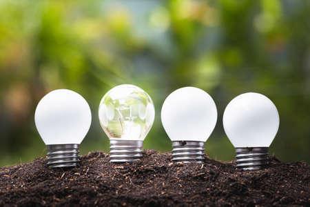 Small light bulbs growing in the garden Stock Photo