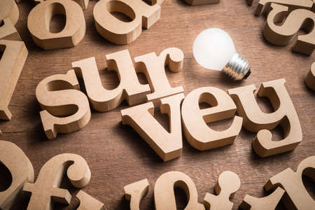 SURVEY wood word in scattered wood letters with glowing light bulb