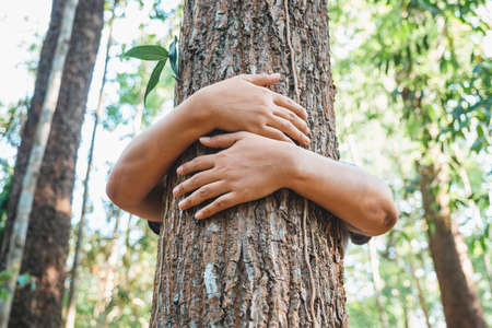 A woman stand behind and give a hug to the old tree in the tropical forest Imagens