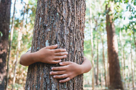 L'enfant se tient derrière et donne un câlin au vieil arbre dans la forêt tropicale Banque d'images