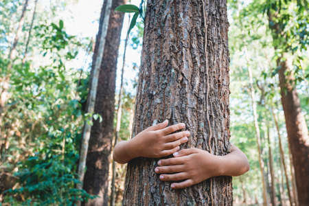 Child stand behind and give a hug to the old tree in the tropical forest