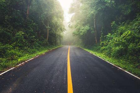 Nasse Asphaltstraße und Nebelwetter durch den tropischen Wald auf dem Berg tagsüber, Regenzeit in Thailand Standard-Bild