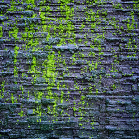 Wet granite wall decorated as cascade in the garden with some green moss, abstract background