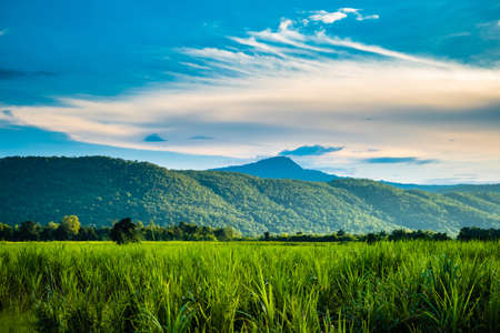 Countryside view at Khao Luang National Park, travel in Sukhothai, Thailand
