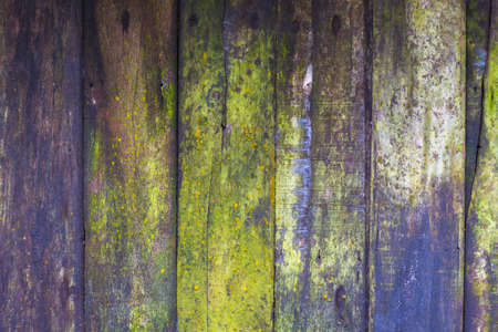 Colorful old wood wall, closeup from abandoned hut in the jungle for a long time and effect the surface by weather and nature Banco de Imagens