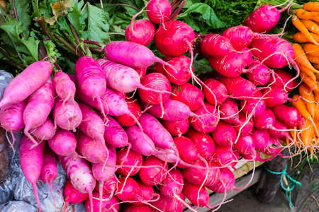 Pile of pink radish for sale in the local market at Phu Thap Boek (tourist attraction high mountain), Petchabun province of Thailand Banco de Imagens