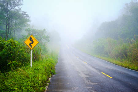 Wet road through the forest in foggy morning, winter at Phu Hin Rong Kla National Park, Phitsanulok, Thailand