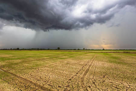 Storm Clouds pouring rain over the dry rice field that lack of water distribution, rainy season in countryside of Thailand