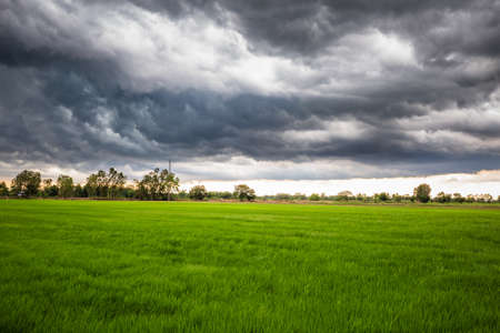 Overcast sky with storm clouds over the green rice field, rainy season in countryside of Thailand