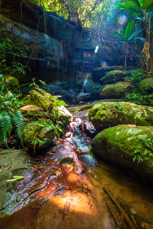 Small creek and lush foliage at Sai Phon Waterfall within Phu Hin Rong Kla National Park, Famous National Park in the Central of Thailand Stockfoto