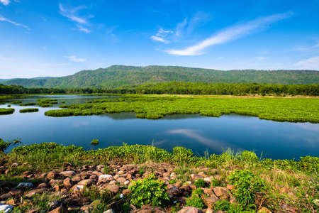 Landscape of reservoir in countryside of Phitsanulok, Thailand with mass of water hyacinth