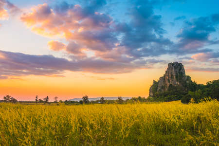 Yellow meadow and limestone mountain under beautiful sky at sunset, tourist attraction and travel scenic at Noen Maprang district, Phitsanulok, Thailand 版權商用圖片