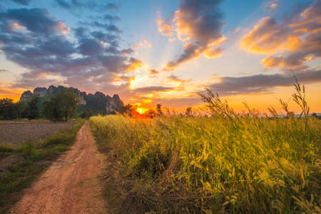Grasses meadow along the dirt road to the limestone mountain with beautiful sunset sky, travel scenic around Noen Maprang district, Phitsanulok, Thailand 版權商用圖片