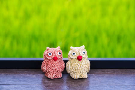 Miniature stone owl dolls decorated on the table near the green rice field