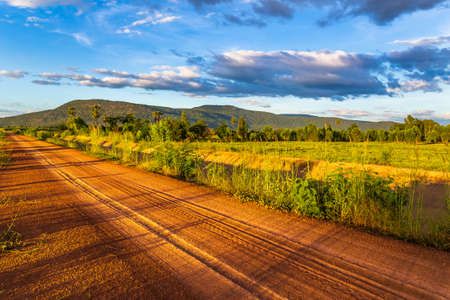 Dirt road with tire tracks along the irrigation canal and rice farm, peaceful scenic in countryside of Thailand