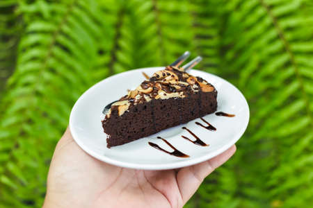 Closeup brownie cake on small plate in hand, use green fern leaves in the garden as background 版權商用圖片