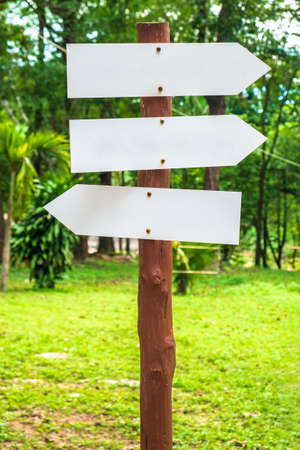 Wooden signpost with blank arrow direction in the forest park