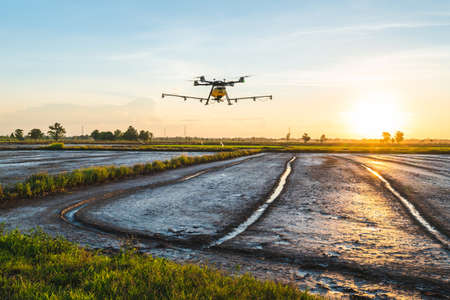 Agriculture drone flying over the rice field, chemecial herbicide spraying by drone in countryside of Thailand