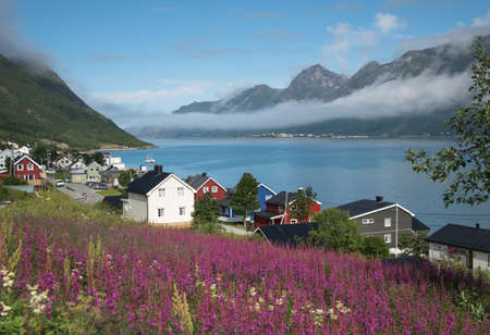 ロウン パイン島, ノルウェーのノルウェーの村の風景 写真素材