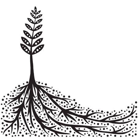 soils: Piante e radici sfondo  Vettoriali