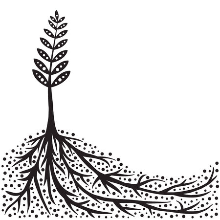 cultivating: Plant and Roots Background