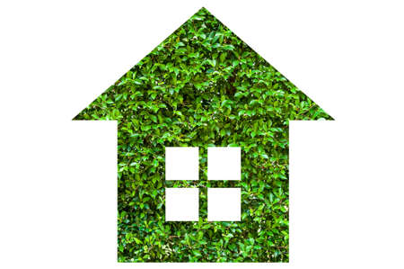 House symbol in green leaves Stock Photo - 17208104
