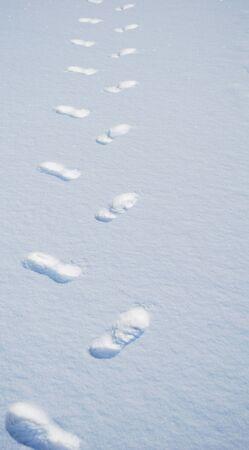 streifzug: menschlichen Fu�spuren auf dem Schnee